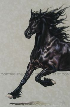 Friesian Black Horse Original Pastel LOVE this