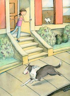 Run away Border Collie