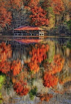 Autumn In The Smokey Mountains -- photo: Marcia Colelli