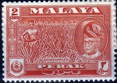 Malay State of Perak 1957 SG 151a Pineapples Fine Mint SG 151a Scott 128 Other British Commonwealth Stamps here