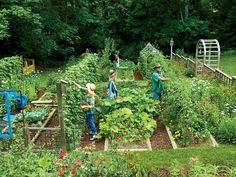 Garden Types Steal These Secrets for Growing Your Own Veggie Patch - Indoor Vegetable Gardening, Veg Garden, Vegetable Garden Design, Edible Garden, Organic Gardening, Container Gardening, Gardening Tips, Garden Compost, Vegtable Garden Layout