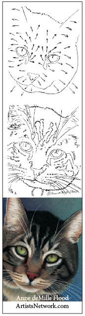 Easy animals to draw | ArtistsNetwork.com