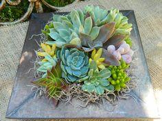 Succulent Centerpiece, Succulent Garden, Succulent Tabletop, Succulent Wedding Table Decor, Fall Wedding Table. $32.00, via Etsy.