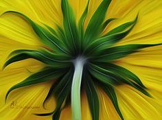 Beauty hiding by almalki abdullrahman on 500px