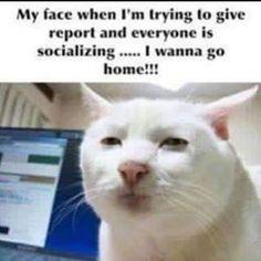 Omg.....so annoying.