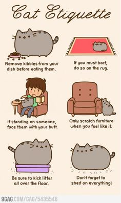 Pusheen´s Cat Etiquette by mandala - A Member of the Internet's Largest Humor Community Crazy Cat Lady, Crazy Cats, Chat Pusheen, Pusheen Book, Pusheen Gifts, I Love Cats, Cute Cats, Adorable Kittens, The Bloodhound Gang