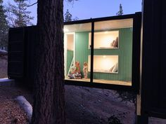 Container home in the woods by Abrego Interiors, Bergen Abrego Residential Building Design, Handmade Furniture, Bergen, Recycled Materials, Home Goods, Solid Wood, Eco Friendly, Interior Design, Home Decor