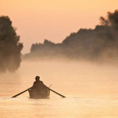 Visit Danube Delta Biosphere Reserve, the Authentic Nature of Romania. Unique Experiences at the Birds Paradise ✅Verified Locations ✅UNESCO Heritage Danube Delta, Romania