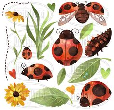 Watercolor Ladybug Clipart #ZIP#package#file#Leaves