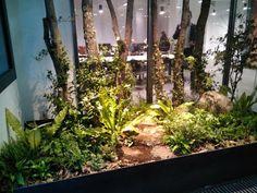MUSPAISAJISMO – paisajismo, proyectos, obras, servicios jardinería, sanidad vegetal, gestión arbolado