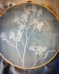 Lisa Shepherd, Textile illustrator and printer. Just prepping a few delicate Kangaroo Paw prints on silk. A Level Photography, Kangaroo Paw, Cyanotype, Paw Prints, Textile Artists, Creative People, Textile Design, Printer, Illustrator