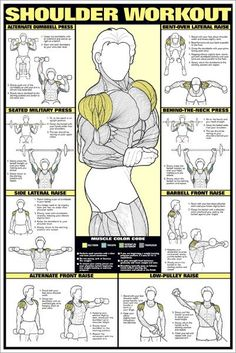 CO-ED Shoulder Workout Professional Fitness Gym Wall Chart P.- CO-ED Shoulder Workout Professional Fitness Gym Wall Chart Poster – Fitnus Posters CO-ED Shoulder Workout Professional Fitness Gym Wall Chart Poster – Fitnus Posters - Fitness Workouts, Weight Training Workouts, Sport Fitness, Mens Fitness, Fun Workouts, At Home Workouts, Group Workouts, Enjoy Fitness, Gym Workouts For Men