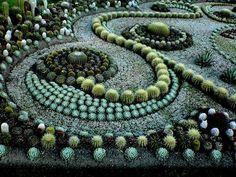 Lovely Cactus Garden Design #4 Cactus Succulent Garden Designs ...