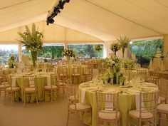 Green Themed Wedding Reception - Yahoo Image Search Results