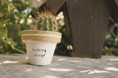 Looking+Sharp+Succulent+Pot+by+PlantPuns+on+Etsy