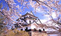 Let's head to Hikone and Nagahama in Shiga Prefecture to take a journey through history | JAPAN Monthly Web Magazine
