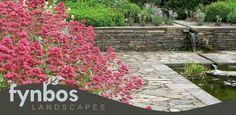 Fynbos Landscapes Contact Details Gauteng Water Features, Landscapes, Sidewalk, Water Sources, Paisajes, Scenery, Side Walkway, Walkway, Backyard Ponds