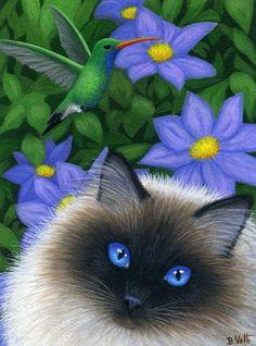 Ragdoll cat blue eyes hummingbird garden flowers original aceo painting art by B.voth u r ssooo beautiful wow Pretty Cats, Beautiful Cats, Animals Beautiful, Cute Cats, Cute Animals, Image Chat, Cat Drawing, Cat Love, Crazy Cats