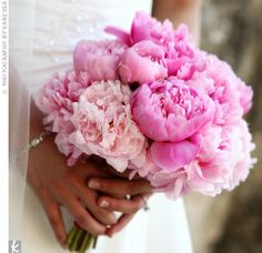 peonies... gorgeous.