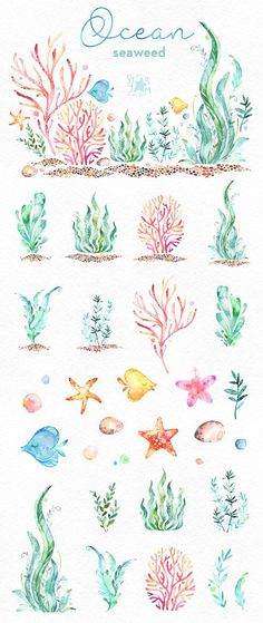 This Ocean Seaweed watercolor set is just what you needed for the perfect invitations, craft projects, paper products, party decorations, printable, greetings cards, posters, stationery, scrapbooking, stickers, t-shirts, baby clothes, web designs and much more. :::::: DETAILS :::::: This collection includes 34 files: - 1 Arrangement in PNG, transparent background - 33 Images in separate PNG files, transparent background Size approx.: 14.6-1in (4400-300px) 300 dpi RGB Set with underwater ...