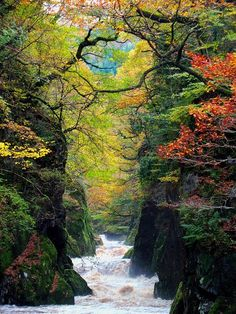 New Wonderful Photos: The Fairy Glen Gorge, Conwy River, Wales