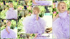 Flower girl dress lavender lilac light purple by DaisiesandDamsels, $299.00