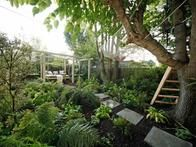 Landscape designer Jamie Durie removed the lawn from a shady backyard and then filled the space with tropical plants, a floating lounge and a daybed.