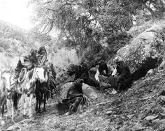 Apache Native Indian Women & Horses 1900 8x10 Reprint Of Old Photo