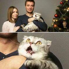 Новогоднее настроение вместе с Tutastan