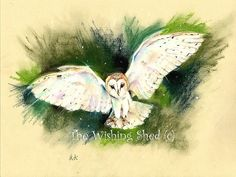 Barn Owl In Flight -  Print - loose contemporary  Pastel drawing whimsical art