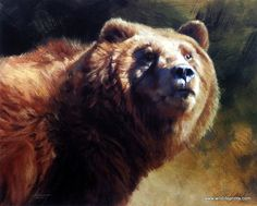 Artist Edward Aldrich Unframed Grizzly Bear Print Portrait of Power Masculine Art, Bear Drawing, Bear Print, Pembroke Welsh Corgi, Wildlife Art, Animal Paintings, Brown Bear, Fine Art, Art Prints