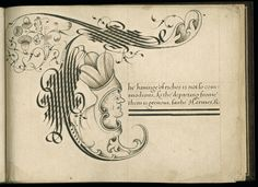 Calligraphy book written in 1592 by John Scottowe. The book presents a calligraphic alphabet, each letter forming an elaborately decorated initial beginning a moral adage or other text, some in English and some in Latin, each in a different script. During the Renaissance, calligraphic manuals helped their owners to master the elegant handwriting valued by humanists while also imparting moral instruction.