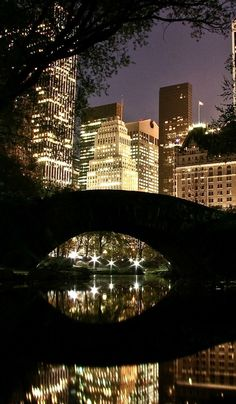 Visit Central Park at night | Tips For First-Time Travel To New York City http://www.everintransit.com/tips-first-time-travel-to-new-york-city/