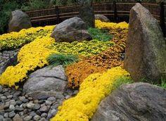 vertical rocks in the rock garden