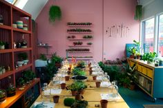 The owner of this terrarium store in South London used an image she chanced across on Instagram to inform the interior's bright colour palette.
