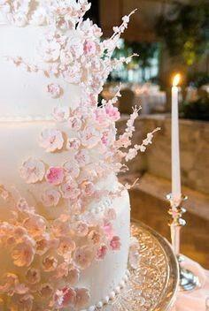 Cherry Blossoms online dating liefde bruid en romances Ice Maker aansluiting slang