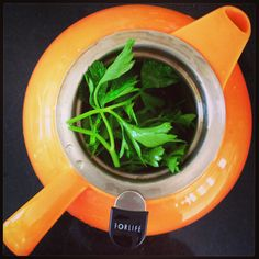 Parsley tea. Kidney cleanse. Put parsley in teapot pour boiling water over it. Sit for at least 15 minutes. Drink hot or better yet chill and drink ice cold in water bottle. Once a week. Makes urine clear, clean. :)
