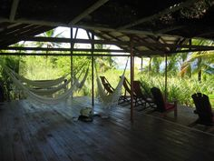 Iguana Lodge, Osa Peninsula in Costa Rica- one of the most heavenly places I have ever visited!