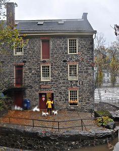 Walking the dogs.....Breck's Mill, Wilmington, DE