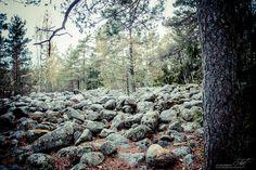 VARTSALAN HIIDENKIRNU JA PIRUNPELTO Halikossa Vartsalassa on hiidenkirnu jonka syvyys on 5.5 metriä ja halkaisija noin 2,5metriä. http://www.naejakoe.fi/luontojaulkoilu/vartsalan-hiidenkirnu-ja-pirunpelto/
