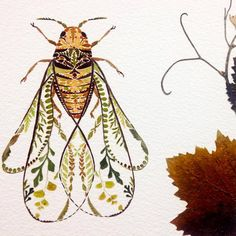 Artist Helen Ahpornsiri (previously) continues to explore the possibilities of pressed plantlife in her ongoing series of wildlife illustrations that depict insects, animals, and other creatures. The England-based artist has recently begun experimenting w Art And Illustration, Website Illustration, Animal Illustrations, Art Inspo, Kunst Inspo, Pressed Leaves, Motifs Animal, Colossal Art, Insect Art