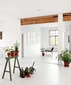interior. living room.