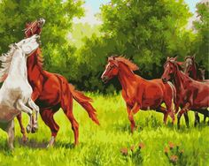 >> Click to Buy << Frameless painting by numbers paint by number for home decor  PBN for living room 4050 four horses #Affiliate