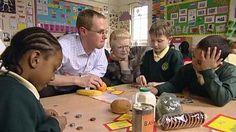 Primary Teaching - Job Profile: https://nationalcareersservice.direct.gov.uk/advice/planning/jobprofiles/Pages/primaryschoolteacher.aspx