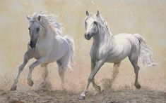 Due Cavalli -  the beautiful art by Danka Weitzen on Fine Art America.