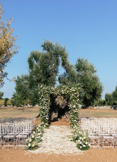 This Is the Ultimate Weekend Itinerary for a Destination Wedding in Puglia Wedding Ceremony Decorations, Vaulting, Outdoor Ceremony, Destination Wedding Photographer, Vineyard, Wedding Day, Wedding Inspiration, Country Roads, Italy