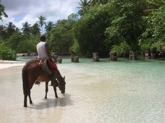 A horseman waters his horse in the Rio Cano Frio in Samana, Dominican Republic