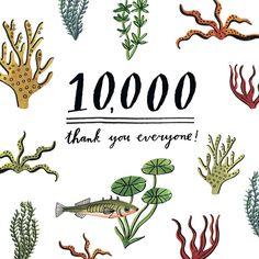 10K  thanks for all the support!!! #bodiljane by bodiljane