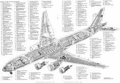 777-300 Cutaway  4,653×3,217 pixels