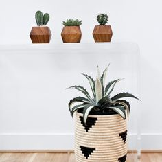 Adia Planter – The Citizenry